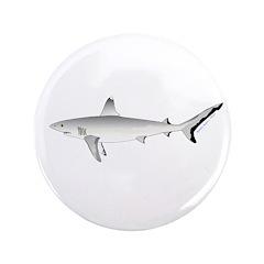 Grey Blacktail Reef Shark 3.5