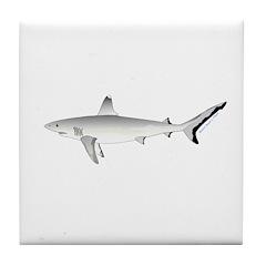 Grey Blacktail Reef Shark Tile Coaster