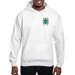 Forge Hooded Sweatshirt