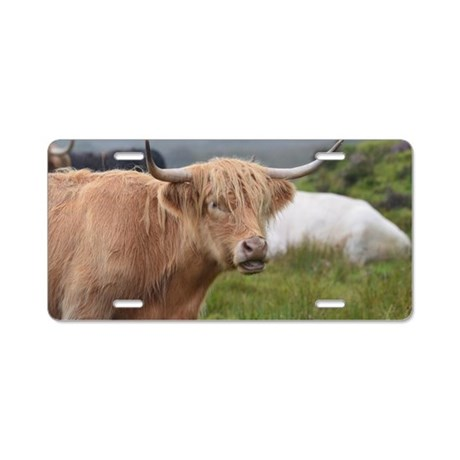 Sweet Highland Cow Aluminum License Plate