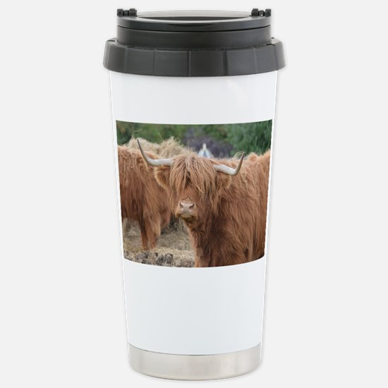 Cute Highland Cow Stainless Steel Travel Mug