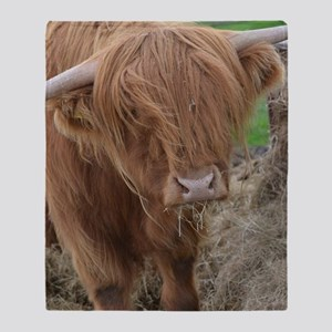Young Highland Cow Throw Blanket
