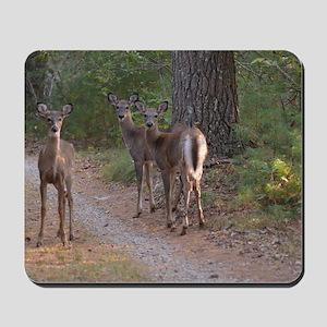 Group of Deer Mousepad