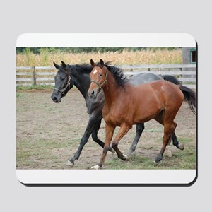 Horses in Love Mousepad