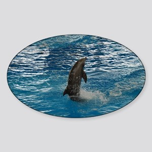 Dolphin Dance Sticker (Oval)