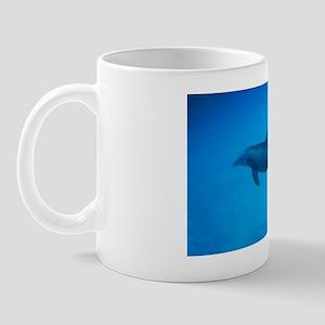Dolphin Swimming Underwater Mug