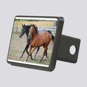 Horses in Love Hitch Cover