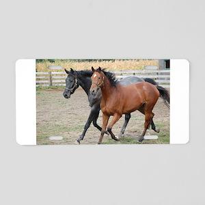 Horses in Love Aluminum License Plate