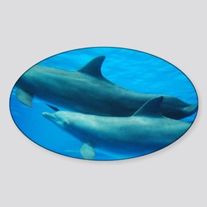 Pair of Dolphin Swimming Underwater Sticker (Oval)
