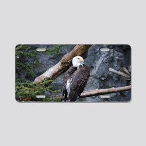 Perched Bald Eagle Aluminum License Plate
