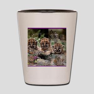 Cougar Cubs Shot Glass
