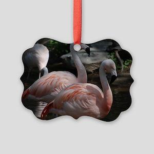 Pair of Flamingos Picture Ornament