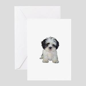 Shih Tzu (bw) pup Greeting Card