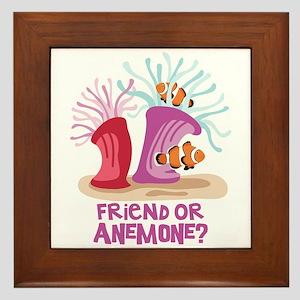 Friend or Anemone? Framed Tile