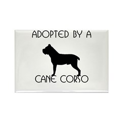 Adopted by a Cane Corso Rectangle Magnet