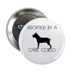 Adopted by a Cane Corso Button