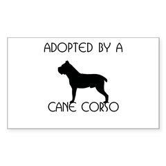 Adopted by a Cane Corso Rectangle Decal