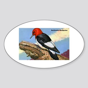 Red-Headed Woodpecker Bird Oval Sticker