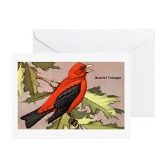 Scarlet Tanager Bird Greeting Cards (Pk of 10)