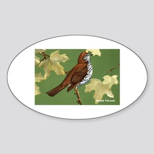 Wood Thrush Bird Oval Sticker