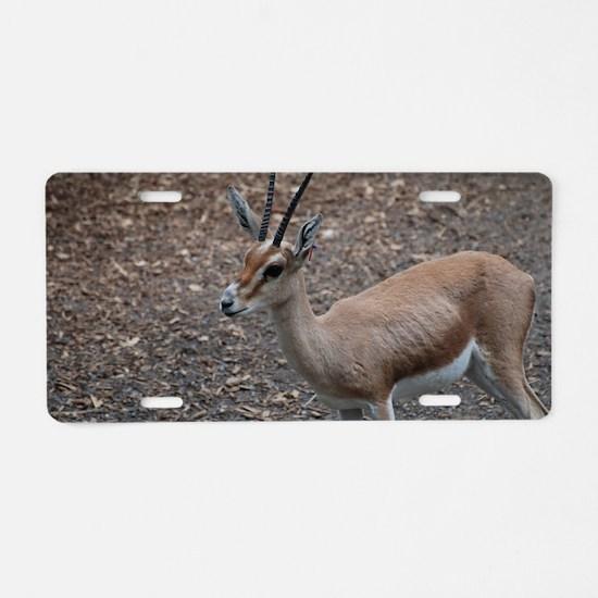 Cute Slender Horn Gazelle Aluminum License Plate
