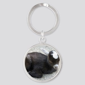 Curled Up Baby Goat Round Keychain