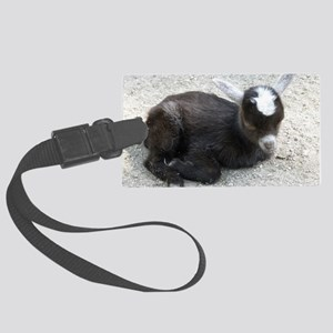 Curled Up Baby Goat Large Luggage Tag