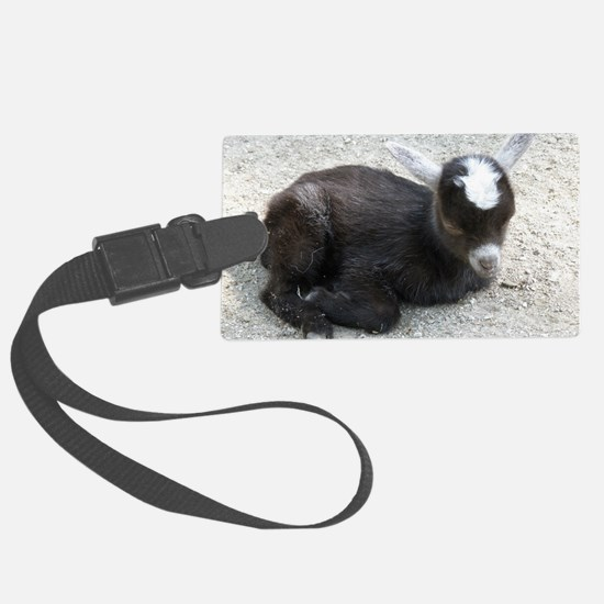 Curled Up Baby Goat Luggage Tag