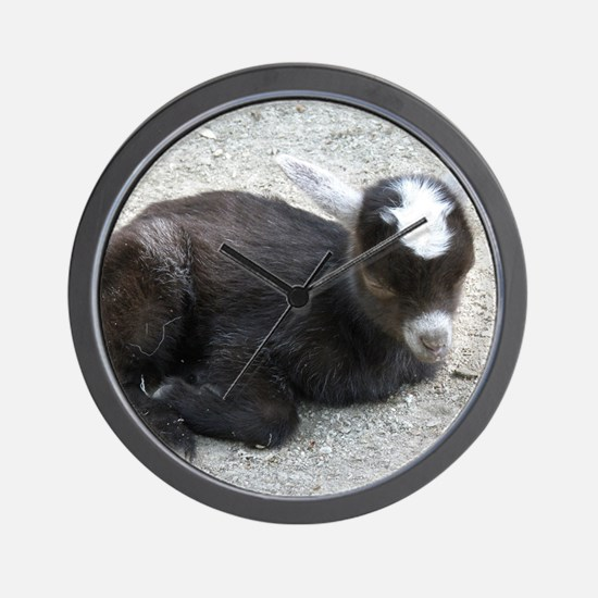 Curled Up Baby Goat Wall Clock