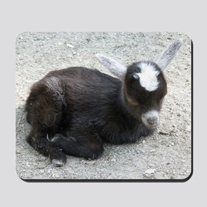 Curled Up Baby Goat Mousepad