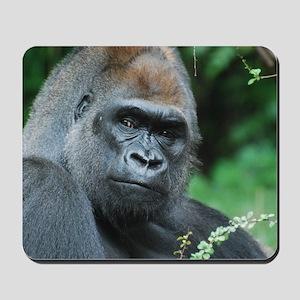 Gorilla Gaze Mousepad
