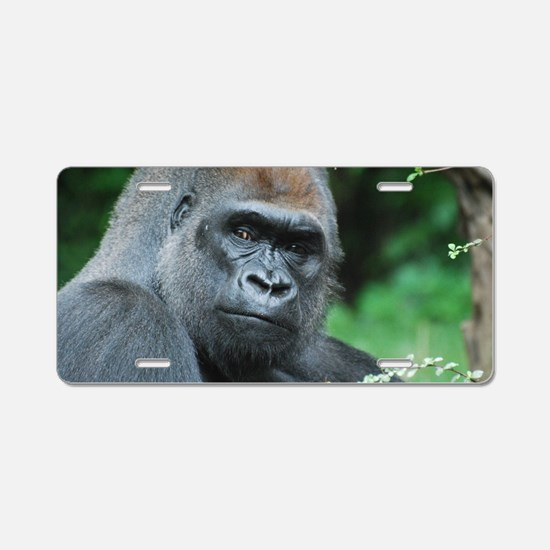 Gorilla Gaze Aluminum License Plate