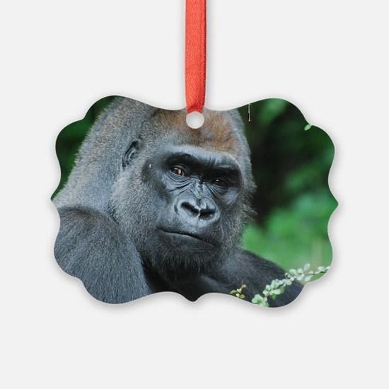 Gorilla Gaze Ornament