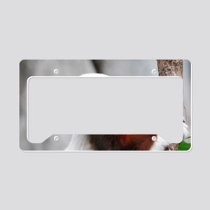 Safika Lemur License Plate Holder