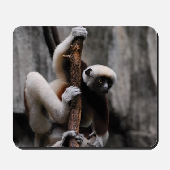 Climbing Safika Lemur Mousepad