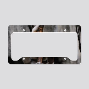 Climbing Safika Lemur License Plate Holder