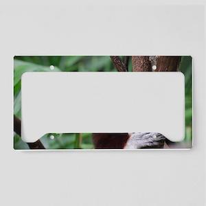 Profile of a Safika Lemur License Plate Holder