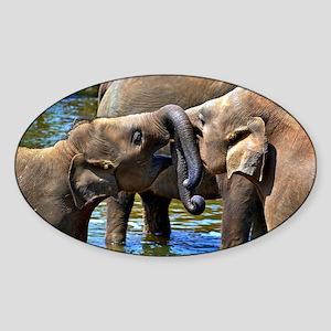 Sweet Kissing Elephant Sticker (Oval)