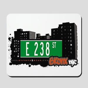 E 238 St, Bronx, NYC Mousepad