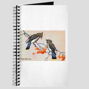 Cedar Waxwing Bird Journal