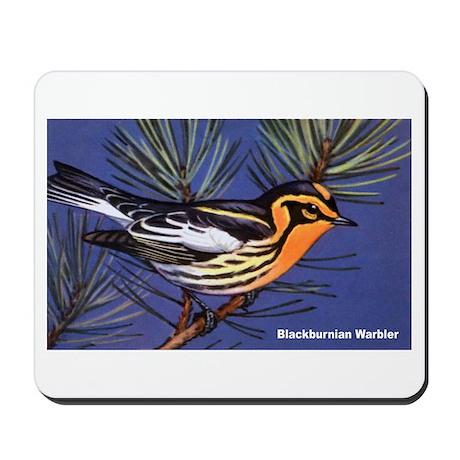 Blackburnian Warbler Bird Mousepad