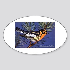 Blackburnian Warbler Bird Oval Sticker