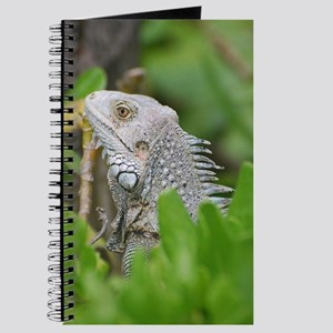 Iguana Face Journal