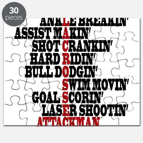 Lacrosse AWorded Puzzle