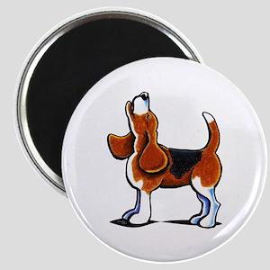 Tricolor Beagle Bay Magnet