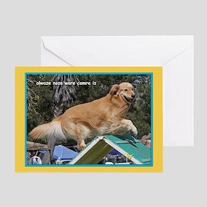 Golden Retriever Camera Birthday Greeting Card