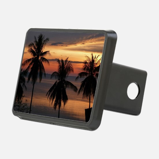 Wonderful Sunset Hitch Cover