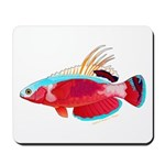 Spot-lined flasher wrasse Mousepad