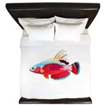 Spot-lined flasher wrasse King Duvet