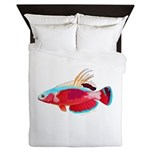 Spot-lined flasher wrasse Queen Duvet